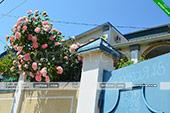 Вид с улицы - Коттедж на морской 8 - Орджоникидзе Крым