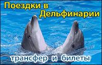Поездки в Дельфинарии Феодосии и Коктебеля